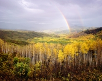 An evening storm rolls over the forest, causing the setting sun to cast a rainbow over the endless expanse of golden aspen that make up the Gunnison National Forest of Colorado.  September 2014Velvia 50 4x5, 75mm Super Angulon2 seconds at f22, polarizing filter and 2 stop soft GND filter