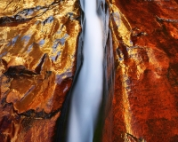 The Left Fork of North Creek flows through a narrow crack in deep red sandstone.  Zion National Park, Utah - November 2016Velvia 50 4x5, 75mm Super Angulon12 seconds at f32, warming polarizer filter