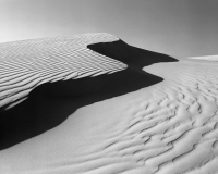 Evening sunlight casts strong shadows on the Oceano Dunes in California.